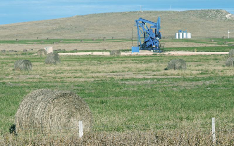 agricoltura e estrazioni petrolifere Ragusa